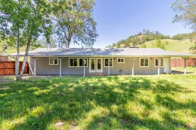 Potter Valley Single Family Home For Sale: 13351 Eel River Road