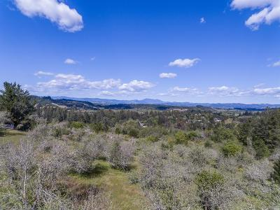 Forestville CA Residential Lots & Land For Sale: $1,350,000