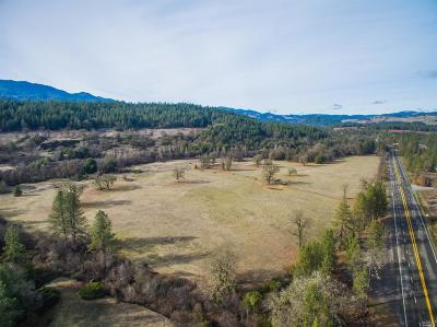 Laytonville Single Family Home For Sale: 48600 Highway 101