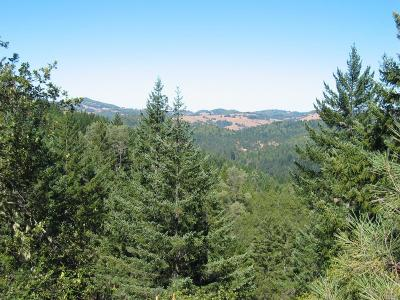 Willits Residential Lots & Land For Sale: 39250 Outlet Creek Road