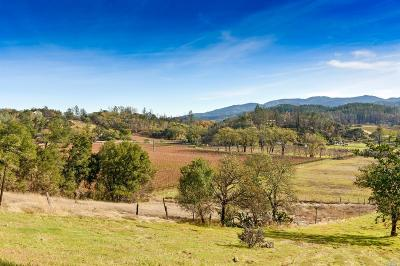 Calistoga Residential Lots & Land For Sale: 3582 State Highway 128