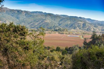 Calistoga Residential Lots & Land For Sale: 3600 State Highway 128
