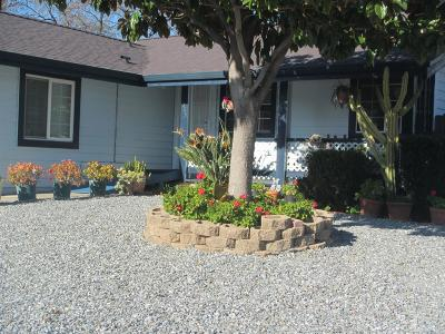 Vacaville Single Family Home For Sale: 513 Tipperary Drive