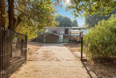 Kelseyville Single Family Home For Sale: 3480 Bergesen Court