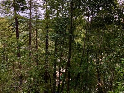 Guerneville Residential Lots & Land For Sale: 15630 Old River Road