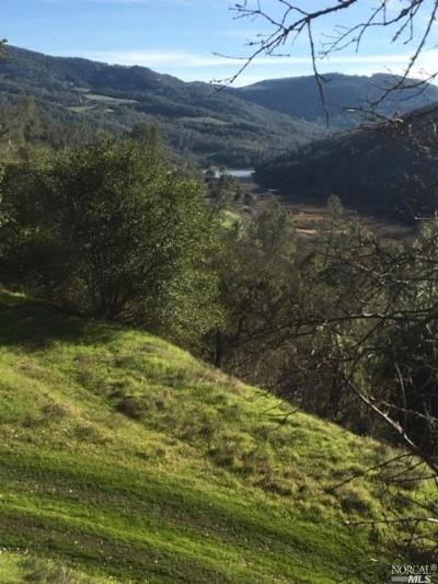 St. Helena Residential Lots & Land For Sale: 2500 Chiles Pope Valley Road