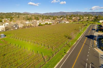 Sonoma County, Mendocino County, Marin County, Napa County, Lake County Residential Lots & Land For Sale: Saratoga Drive