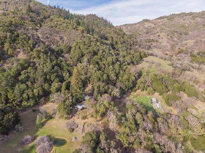 Mendocino County Single Family Home For Sale: 5000 Knoxville Road
