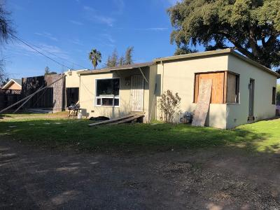 Napa Single Family Home For Sale: 1033 Terrace Drive