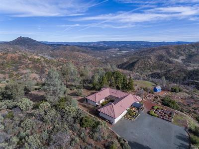 Pope Valley CA Single Family Home For Sale: $1,275,000