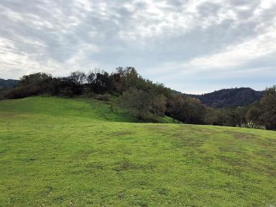 Calistoga Residential Lots & Land Contingent-Show: 4470 Mountain Home Ranch Road