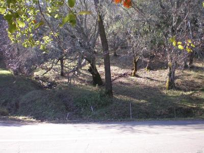 Residential Lots & Land For Sale: Circle Oaks Drive