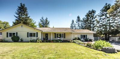 Penngrove Single Family Home For Sale: 1894 East Cotati Avenue