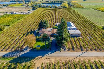Healdsburg Single Family Home For Sale: 396 Foreman Lane