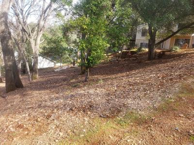 Kelseyville Residential Lots & Land For Sale: 3076 Riviera Heights Drive