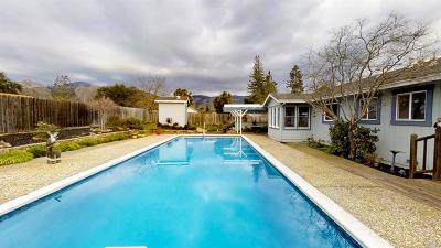 Napa Single Family Home For Sale: 3000 Hagen Road