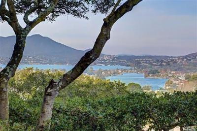 Tiburon Single Family Home For Sale: 10 Alcatraz Avenue