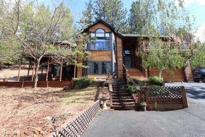 Lake County Single Family Home For Sale: 9470 Hoberg Drive