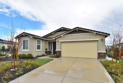 Rio Vista Single Family Home For Sale: 367 Longspur Drive