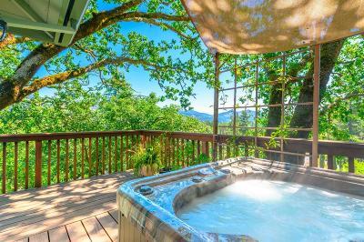 Santa Rosa Single Family Home For Sale: 492 Hillsdale Drive