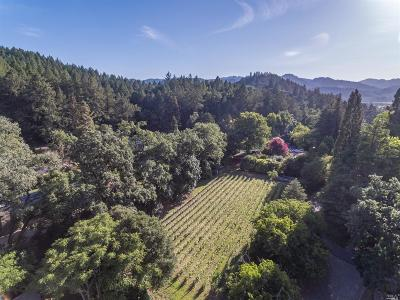 Napa County Single Family Home For Sale: 109 Glass Mountain Lane