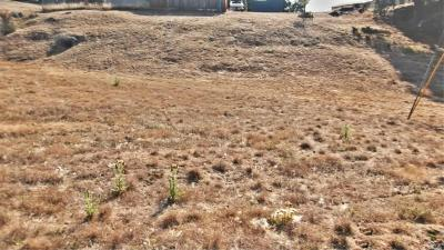 Willits Residential Lots & Land For Sale: 27161 Poppy Circle