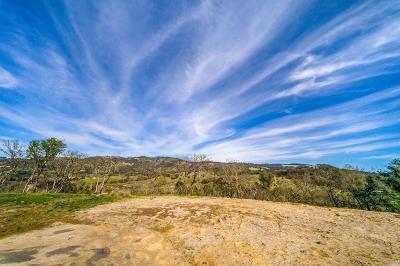 Santa Rosa Residential Lots & Land For Sale: 25 Winter Brook Lane