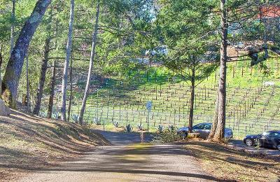 Angwin Single Family Home For Sale: 275 Brookside Drive