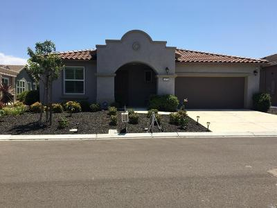 Rio Vista Single Family Home For Sale: 975 Blue Heron Drive