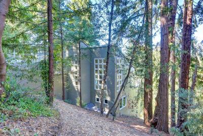 Fairfax Single Family Home For Sale: 62 Bosque Avenue