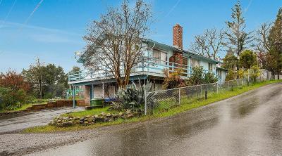 Clearlake Single Family Home For Sale: 13998 Morgan Avenue