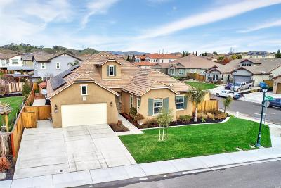 Solano County Single Family Home For Sale: 230 Wild Sage Drive