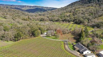 Napa County Single Family Home For Sale: 1080 Wooden Valley Cross Road
