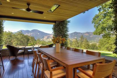 Calistoga Single Family Home For Sale: 3145 State Highway 128