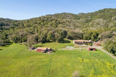 Sonoma County Single Family Home For Sale: 17700 Carriger Road