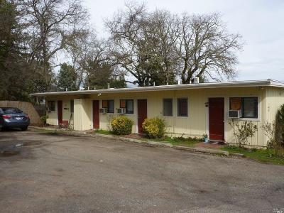 Lakeport CA Multi Family 5+ For Sale: $469,000