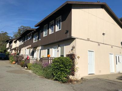 Mill Valley Multi Family 5+ For Sale: 1024 Redwood Highway Frontage Road