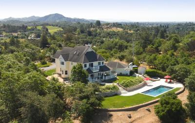 Healdsburg Single Family Home For Sale: 750 Maybee Lane