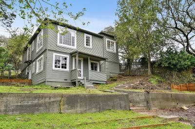 Mill Valley Single Family Home For Sale: 330 Ridgewood Avenue
