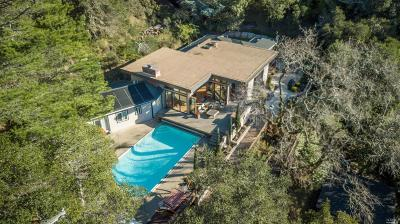 Marin County Single Family Home For Sale: 228 Deer Hollow Road