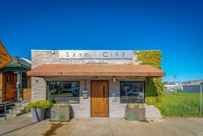 Sonoma County Commercial For Sale: 305 Petaluma Boulevard South