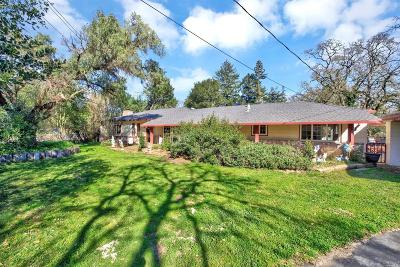 Napa County Single Family Home For Sale: 1191 Hagen Road