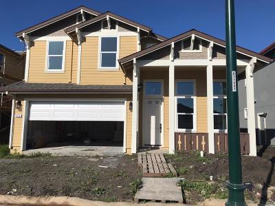 Santa Rosa Single Family Home For Sale: 979 Brunello Drive