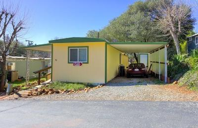 Clearlake Mobile Home For Sale: 16425 Dam Road #32, 32