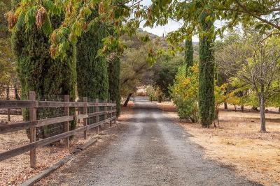 Napa County Single Family Home For Sale: 6450 Gordon Valley Road