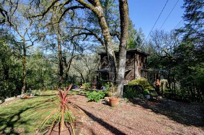 Guerneville, Monte Rio, Cazadero, Forestville Single Family Home For Sale: 9858 Hillside Drive