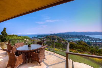 Tiburon Single Family Home For Sale: 11 Acela Drive