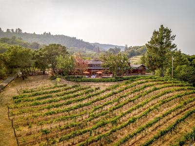 Healdsburg Single Family Home For Sale: 6345 Mountain View Ranch Road