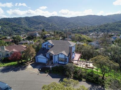 Marin County Single Family Home For Sale: 412 Karla Court