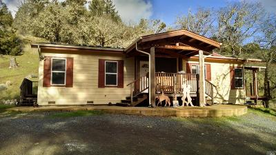 Mendocino County Single Family Home For Sale: 39700 Boar Road